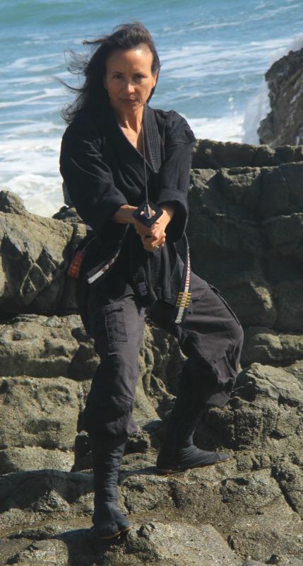 Seigan Ninja 429x800